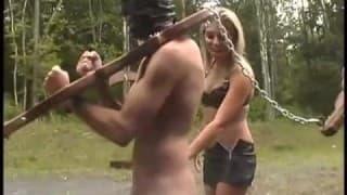 Machos submetidos forçados a fazer sexo na floresta