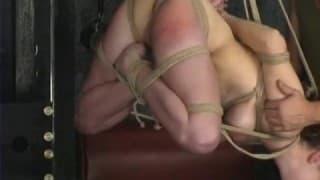 Bondage de cabeça para baixo