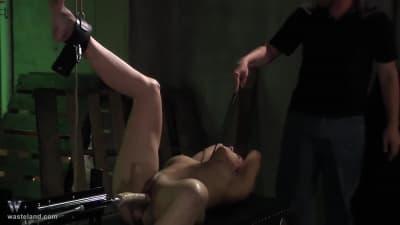 Dominando Daisy com maquinas sexuais